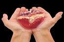 افزایش 55 درصدی اهدای عضو در مازندران