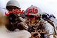 شناسایی 39 شهید اطلاعات و عملیات در استان بوشهر